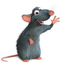 Alguien entró a mi página de ESAD y cambió la imagen de mi perfil!!! 5645-las-ratas-de-cuatro-y-dos-patas-500x300